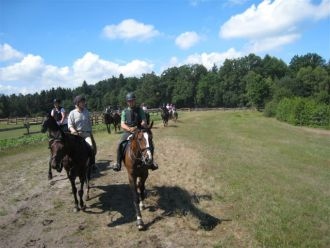 Reiten in der Region Celle